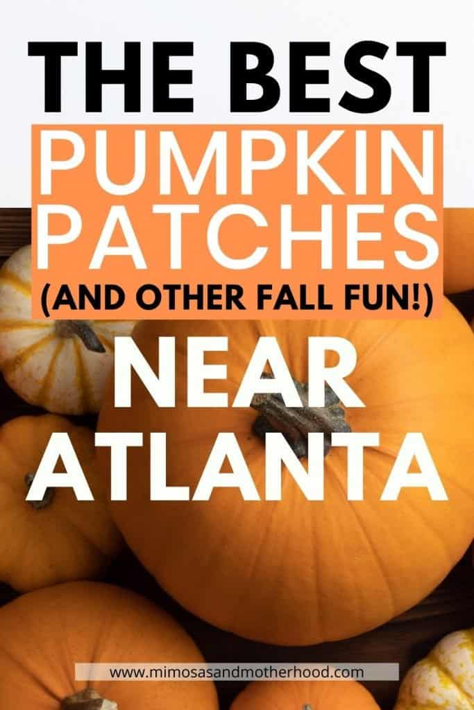 A list of the best pumpkin patches in the Atlanta area
