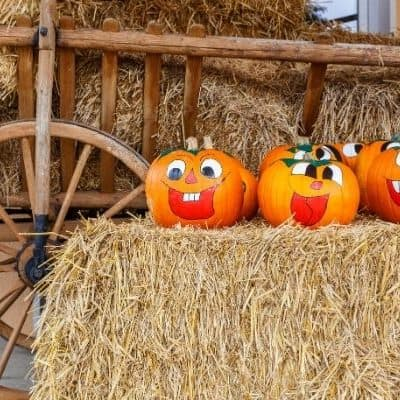 cute ideas for reusing pumpkins