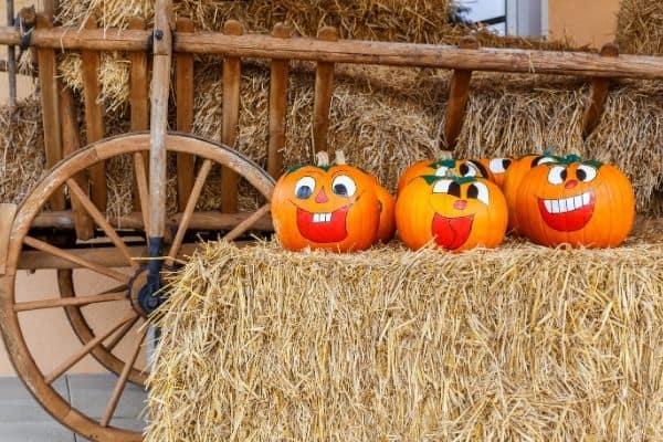 cute ideas for reusing pumpkins
