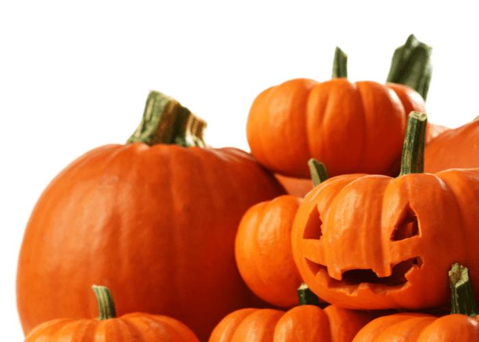 jackolantern sitting on top of a pile of pumpkins