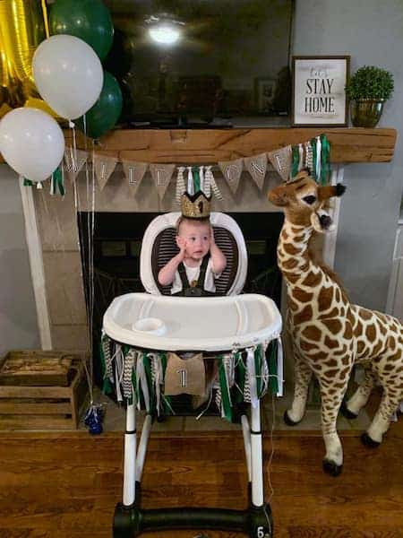 Picture of Wild One First Birthday Party