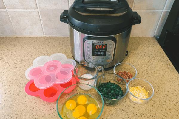 instant pot egg bites ingredients