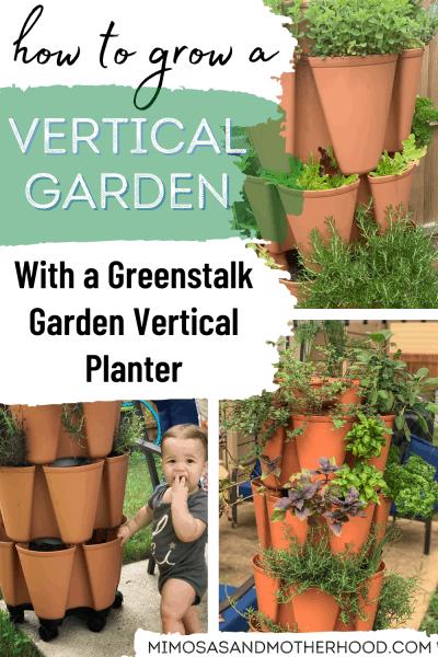 greenstalk garden planter review