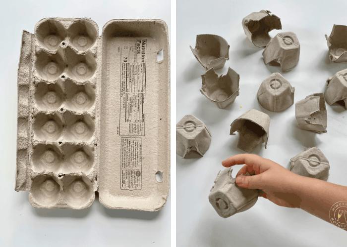 deconstructed egg carton